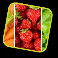 sector frutas