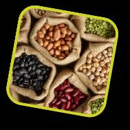sector legumbres