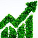 auge productos sostenibles