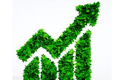 Auge de los productos sostenibles
