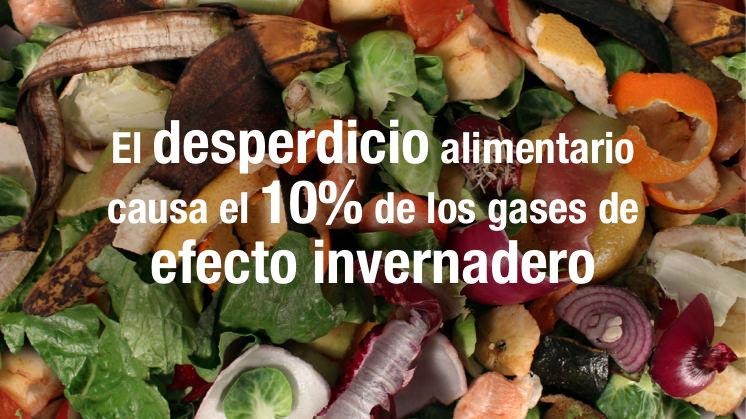 envases compostables desperdicio alimentario